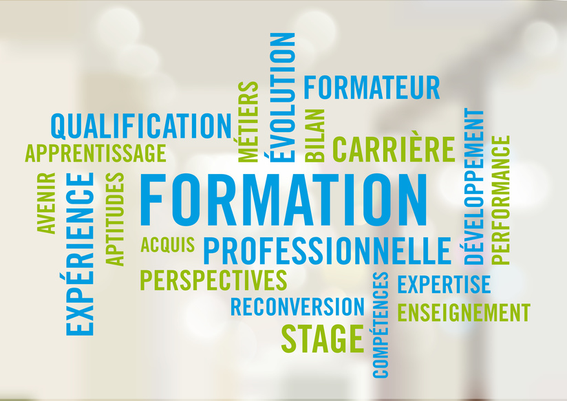 Formation Professionnelle - Nuage de mots